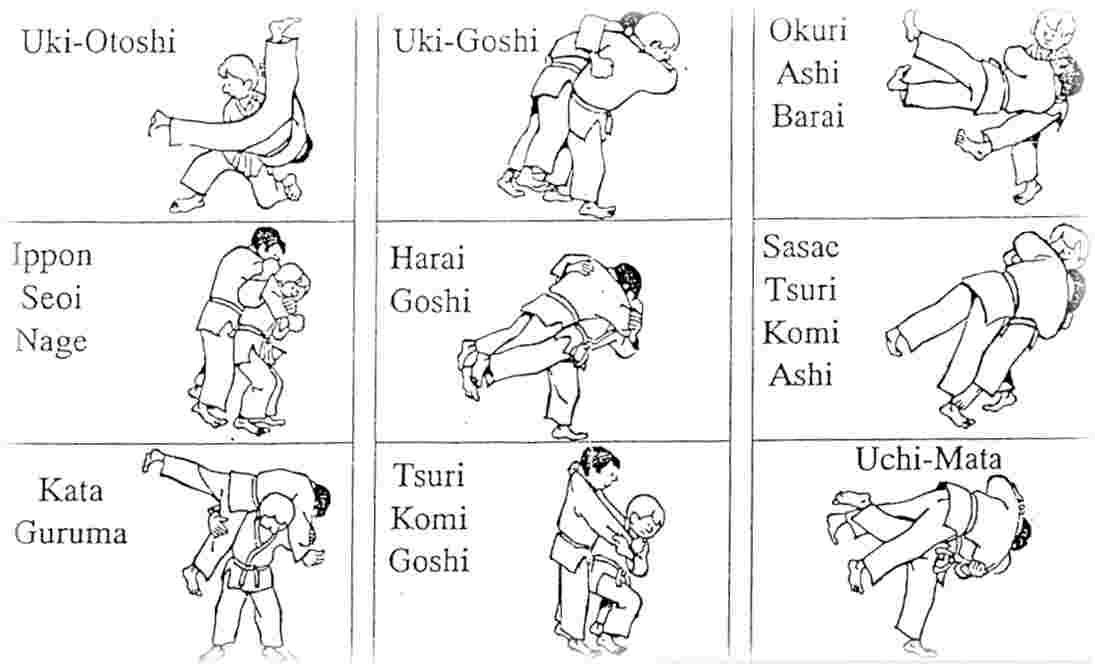 ceinture de judo nom,ceinture de judo decathlon,kata de judo ceinture noire 5c80292dd8c